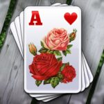 Solitales Garden Solitaire Card Game in One 1.94 MOD Unlimited Money for android