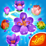 Blossom Blast Saga MOD Unlimited Money for android