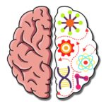 Brain Crazy IQ Challenge Puzzle 1.2.6 MOD Unlimited Money for android