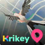 Krikey 2.20.0 MOD Unlimited Money for android