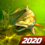 My Fishing World – Realistic fishing 1.14.94 MOD Unlimited Money for android