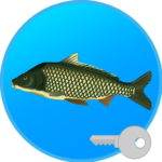 True Fishing key. Fishing simulator 1.14.1.636 MOD Unlimited Money for android