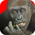 Flying Gorilla 2.143 MOD Unlimited Money for android