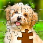 Jigsaw Puzzles Pro – Free Jigsaw Puzzle Games 1.4.3 MOD Unlimited Money for android