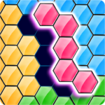 Hexa Puzzle Games PRO Jigsaw Block Puzzle IQ Test MOD Unlimited Money for android