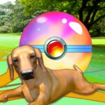 Puppy GO MOD Unlimited Money for android