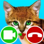 fake call video cat game MOD Unlimited Money for android