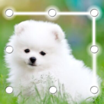 Puppy Dog Pattern Lock Screen MOD Premium Cracked for android
