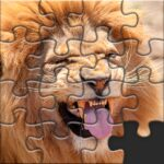 Puzzles for Adults no internet MOD Unlimited Money for android